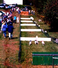 Race Course with Hurdles