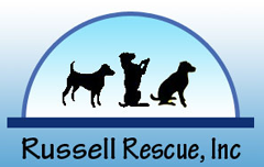 Russell Rescue, Inc.